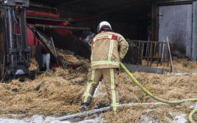 4 koeien gered bij brand